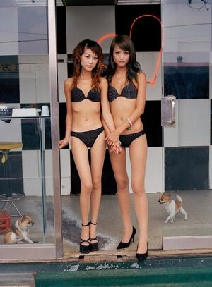 Fancy chinese girlfriends posing on these erotic asian pictures